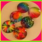 Magnets - Set of 6 - Neon R..