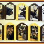 Tags - Wild Animals - 10 Gi..