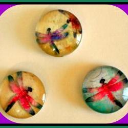 Magnets - Dragonflies Magnet Set of 3 - (Set 3) - 1 Inch Domed Glass Circles