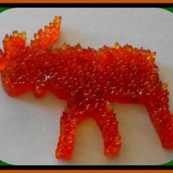 Aroma Bead Melt - Moose - Pumpkin Pie Scented